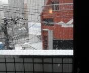 仙台は、雪!!
